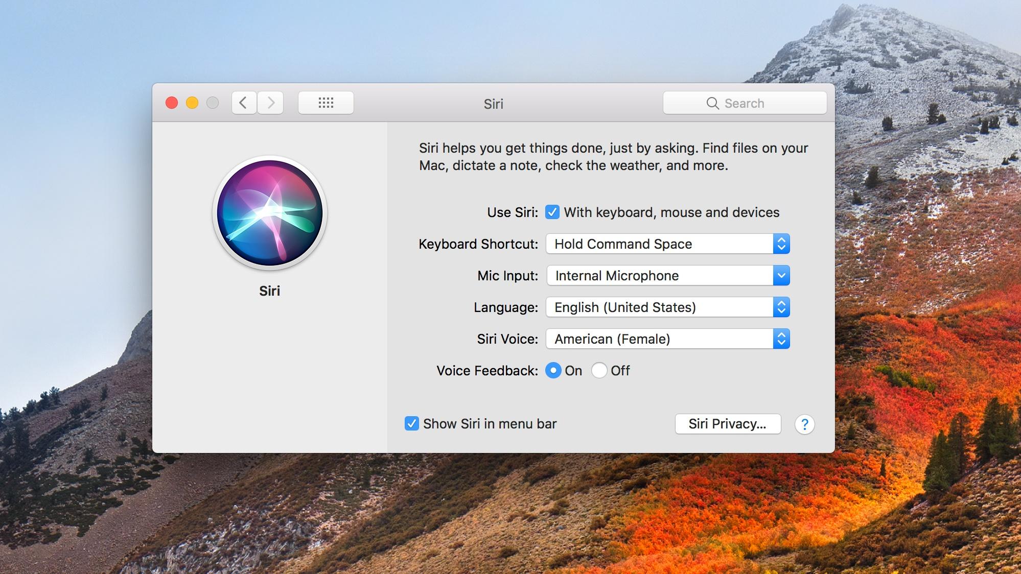 macOS High Sierra Siri Changes